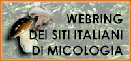 WEBRING DEI SITI ITALIANI DI MICOLOGIA